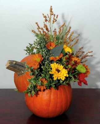 Sat Nov 21 2020 , Kid's Grab and Go Sugar Pumpkin Thanksgiving Arrangement Kit, 201121001
